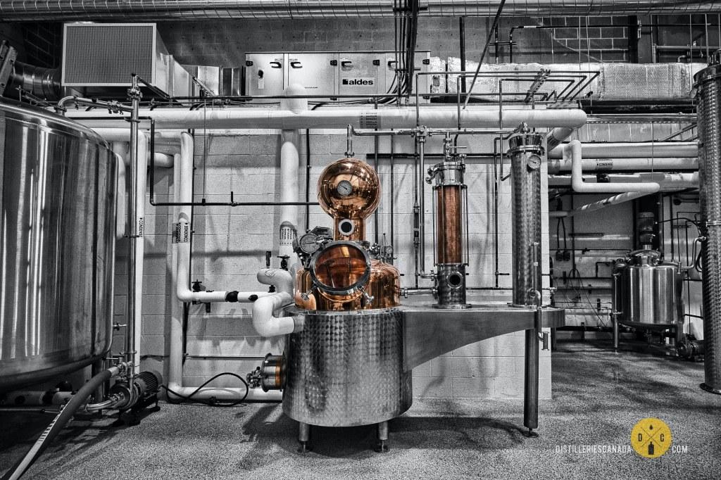 L'alambic à gin de la Distillerie la Manufacture