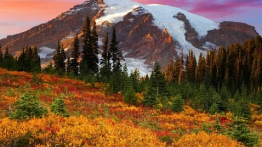 Fall Floiage Wallpaper Fall Photography Tips Distinctly Montana Magazine