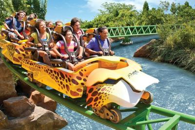 Up in Tampa lies Busch Gardens, another Floridian theme park geared towards thrill seekers. The park has many attractions to choose from, especially roller coasters. Source: Undercover Tourist.