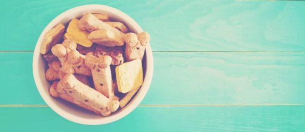 Petfood: alimentação natural, mix feedding e grain free são as tendências