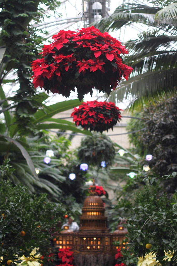 Christmas at the United States Botanic Garden