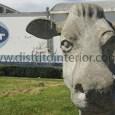 La empresa láctea SanCor ratificó ante sus tamberos su plan de reestructuración, que incluye el despido de personal y la venta de la empresa.Fue en la localidad de La Carlota, […]
