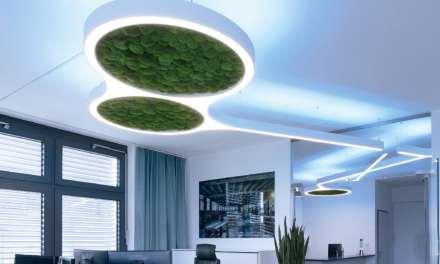 Sistema de luz colgante Ringo Star de Lightnet