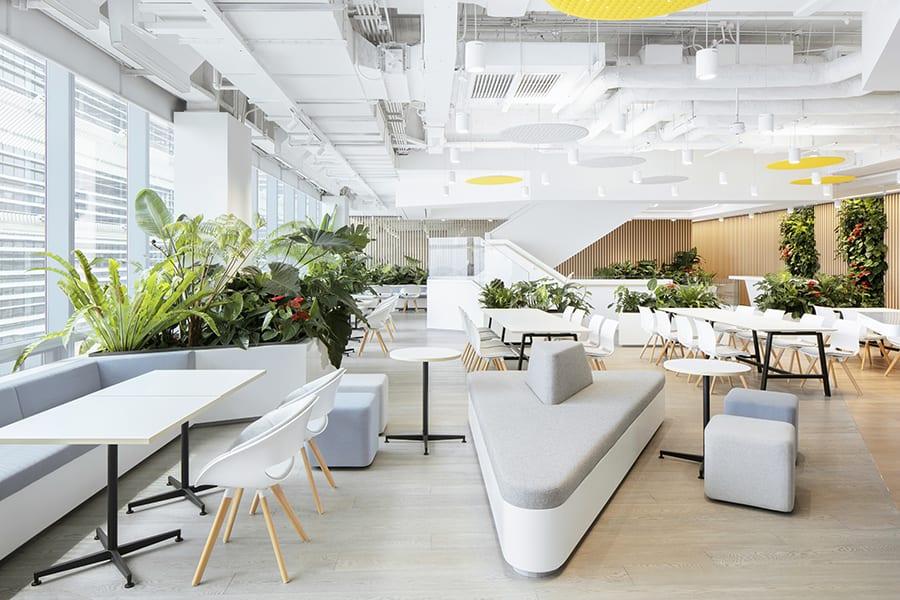 oficina saludable