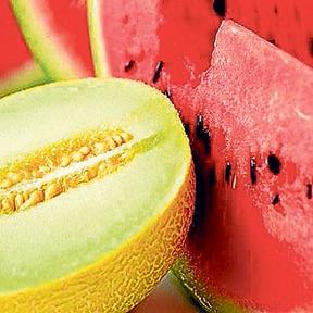 melon-o-sandia - Julio