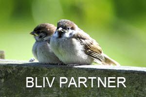 Bliv-partner-Byportalerne2