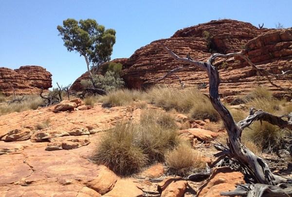 De outback van Australië, bijzonder!