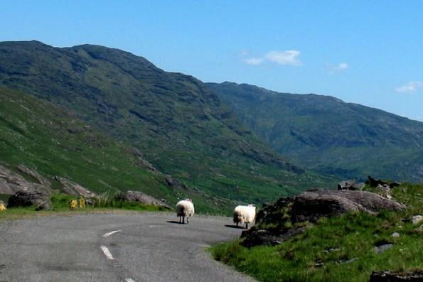 Juni is een mooie maand om Ierland te bezoeken, beter dan juli of augustus!