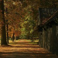 Het is weer bijna herfst: 25 toffe dingen om te doen!