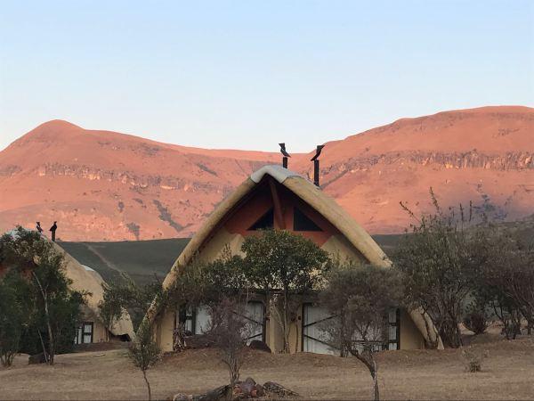 Didima Camp blog Zuid-Afrika