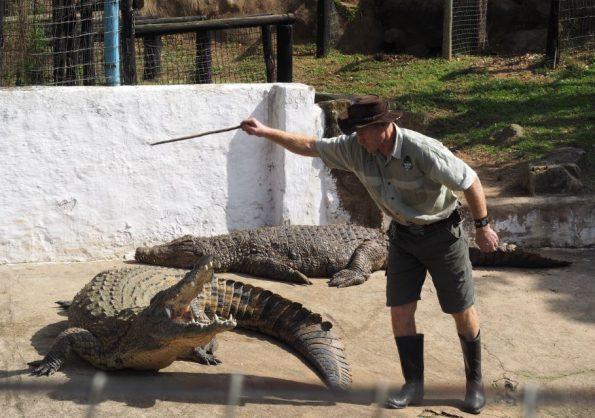 Crocodile Creek Ballito