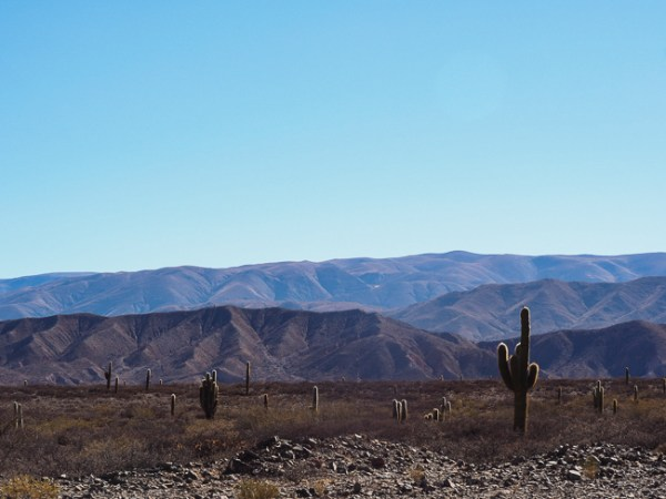 Roadtrip Salta Argentinië