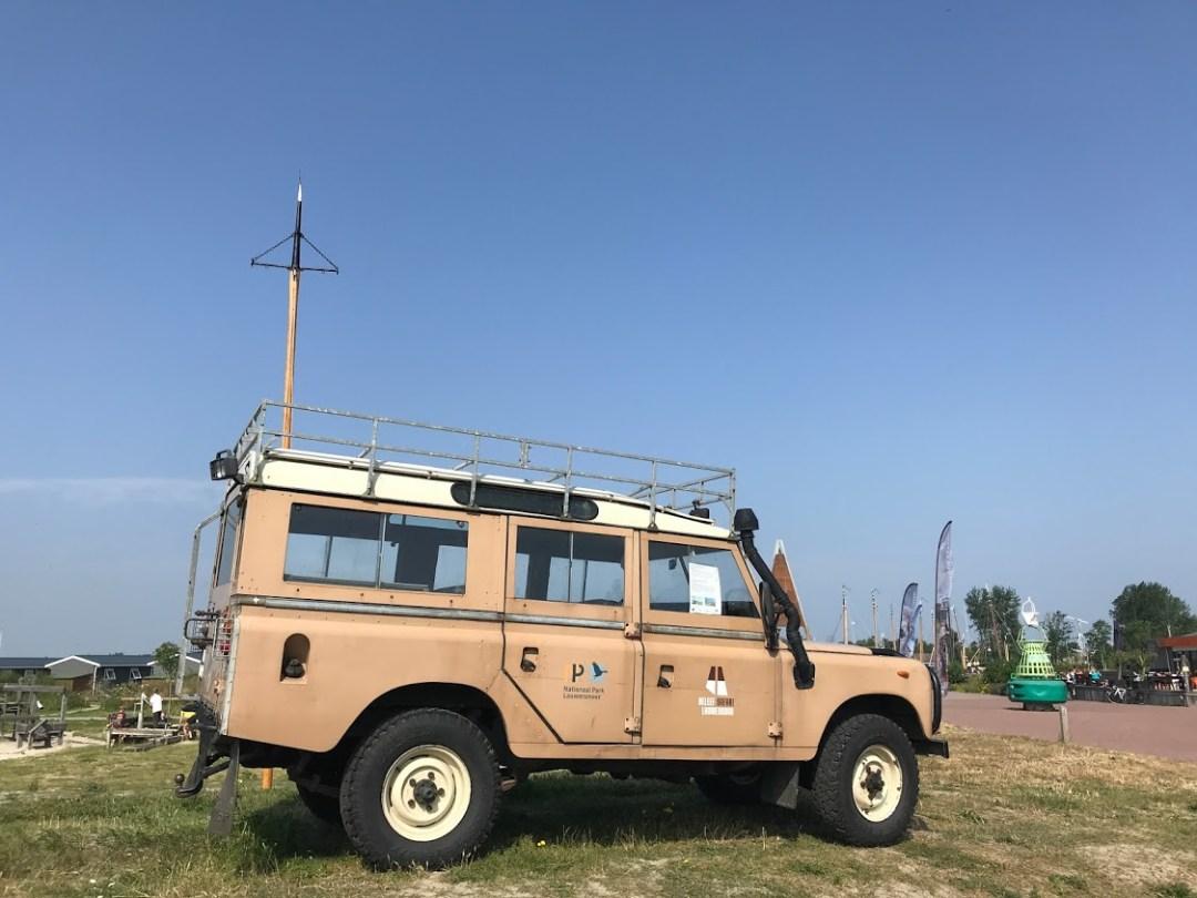 Safari Lauwersmeer