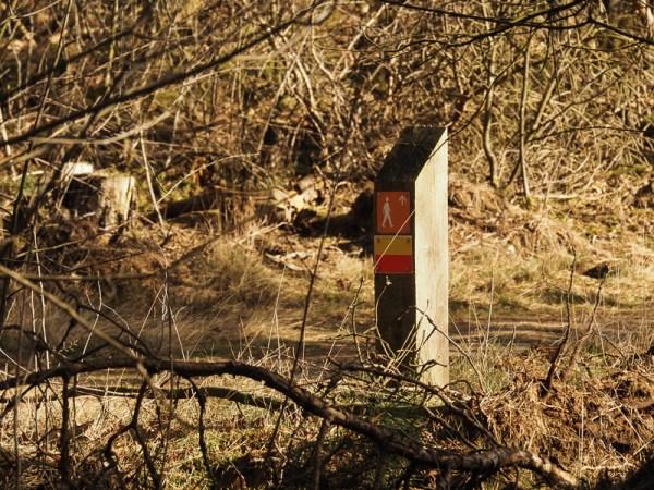Boswachterspad Kootwijk
