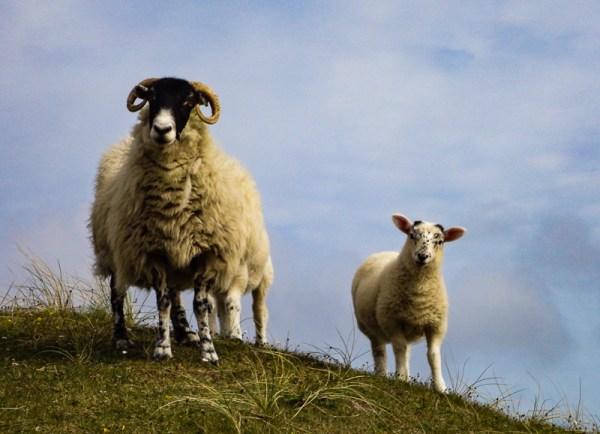 Schotland Outer Hebriden