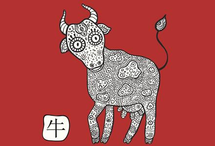 bivol horoscop chinezesc