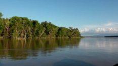El área cuenta con una superficie de 24.750 hectáreas más 5.275 metros cuadrados Foto: Capital Financiero
