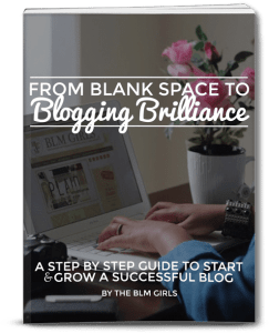 From Blank Space to Blogging Brilliance Ebook