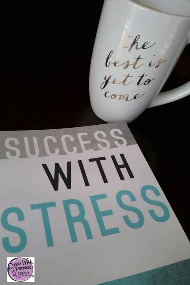 Success With Stress Jae Ellard
