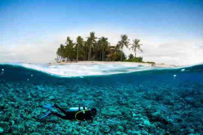 Diving at Lembongan and Nusa Penida, Bali | Dive The World ...