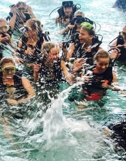padi introductie duik