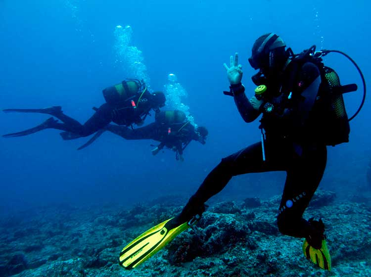 PADI Pro, Professionel, Kurse, Dive College Lanzarote, Playa Blanca