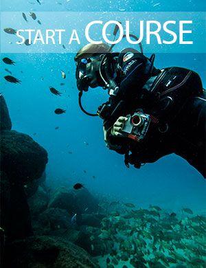 Start diving, PADI courses, Dive College Lanzarote, Playa Blanca
