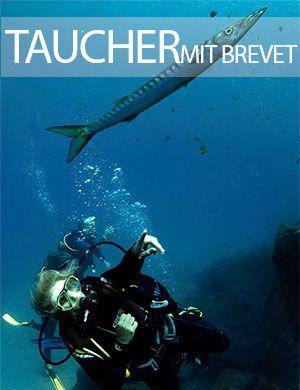 Taucher mit brevet, Dive College Lanzarote, Playa Blanca