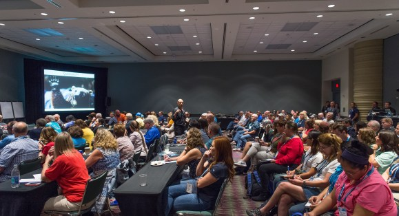 DEMA Show 2018 Issues Call for Speakers