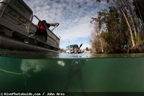 An Underwater Photographers Guide To The Manatees Of