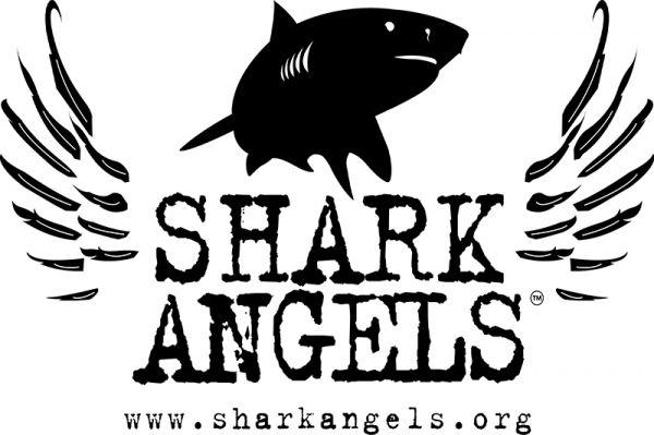 Shark Angel's World Oceans Day Charity Auction