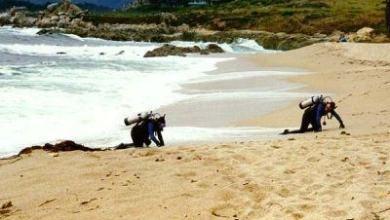יציאה מהמים צלילה מהחוף - כשהמים סוערים