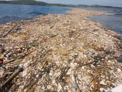 פסולת פלסטיק סמוך להונדורס Photo: Caroline Power