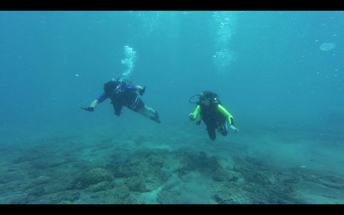 Disabled Diving with Diveria Diving Center