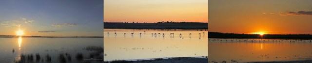 https://www.diversidadyunpocodetodo.com/fondos-pantalla-wallpapers-naturaleza-paisaje-puesta-sol-manjavacas-1/