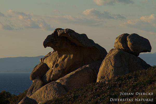 Rockscape