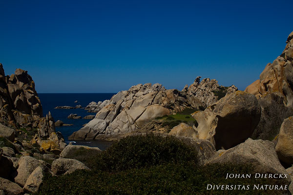 Sardinië - Capo Testa