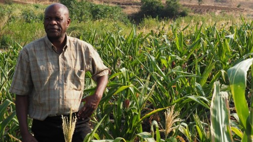 Monsanto Leverages Business Resource Groups to aid the African & African-American Farmer