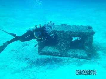 Cozumel Mexico with Diveshack USA May 2014 21