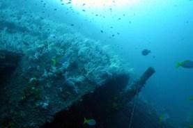 HMS Repulse 4inch gun