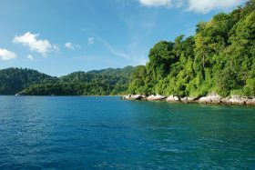 Monkey Bay on Tioman