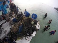 Tioman Mangrove Bay Debris