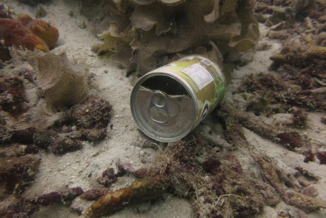 Discarded tin cans from visiting fishing boats