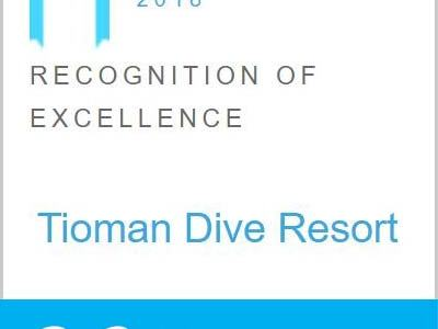 TDR - Recognition of Excellence