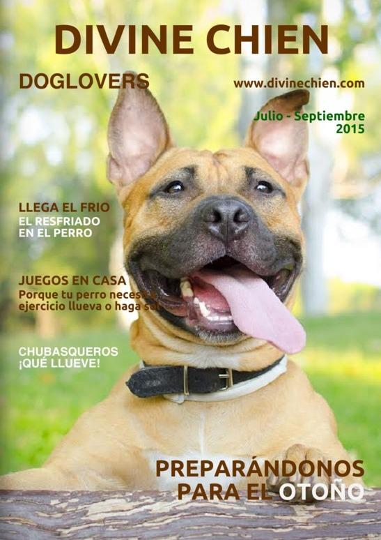 Magazine para perros