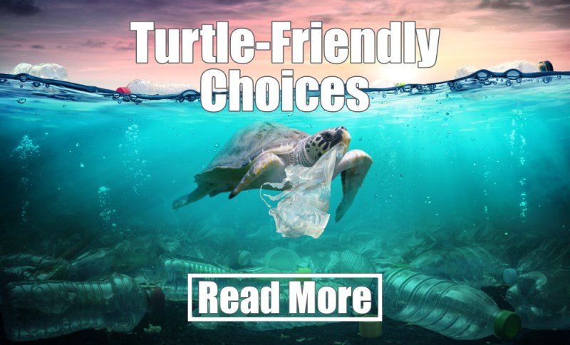 turtle-friendly-choices
