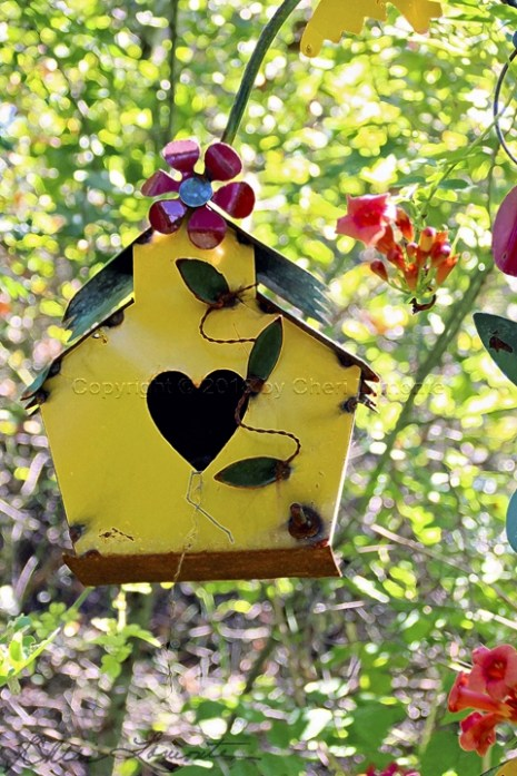 Birdhouse in Shari's Garden