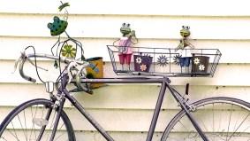 Frog Dance - Bike