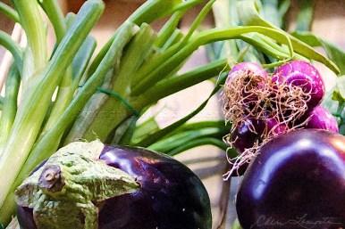 Eggplant and Onions