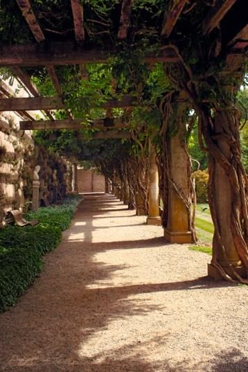 Trellised Walkway